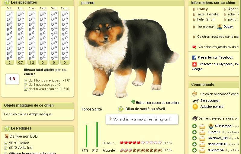 Dogzer Screenshot Adopt Fluffy
