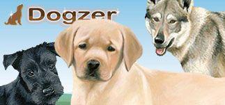 dogzer_list_323x151