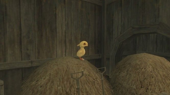 Final Fantasy XI, Chocobo