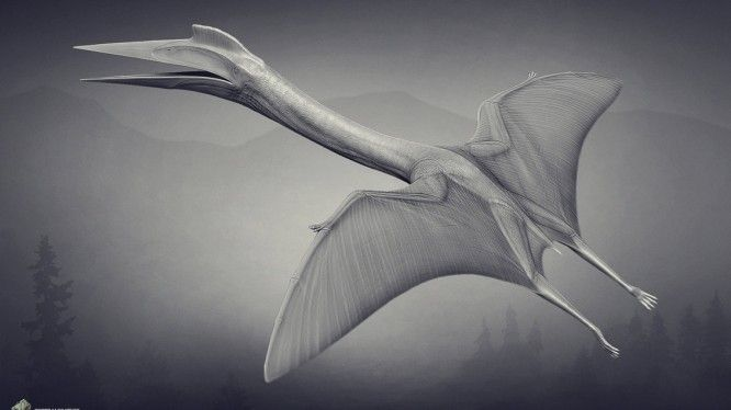 Quetzalcoatlus The Stomping Land