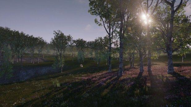 The Isle Screenshot Alpha Forrest Morning