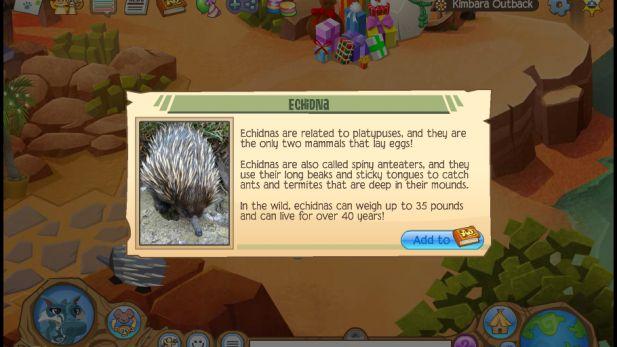 Animal Jam Echidna Discovery