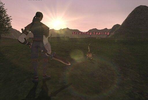 Final-Fantasy-XI-Sunset-Duel