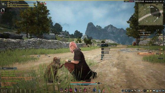 Black Desert Online Launch