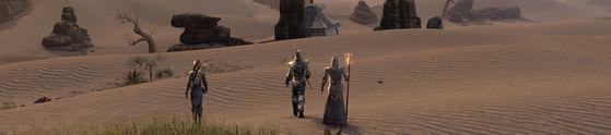 Elder Scrolls Desert Banner