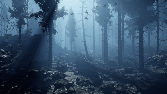 Chronicles of Elyria Forest