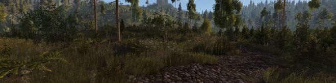 life is feudal MMO Interview