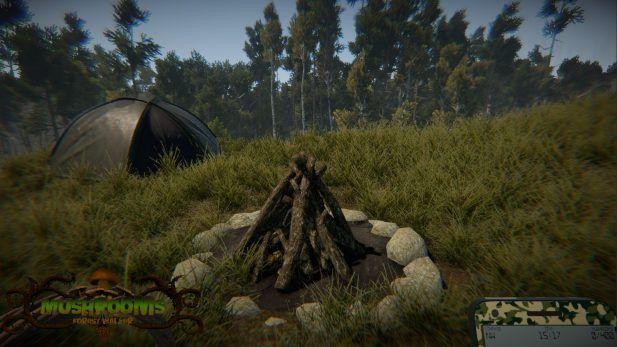 Mushrooms: Forest Walker